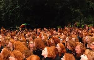 gingercrowd